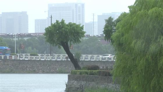 """金坛区积极应对""""利奇马"""" 全力抗台风保安全"""